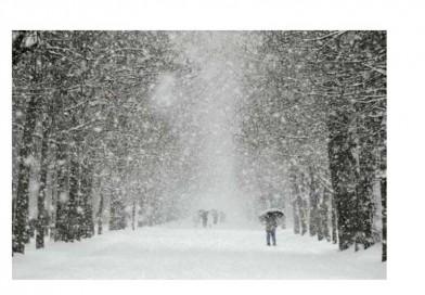 В неделя валежите спират за малко, в понеделник чакаме повече сняг