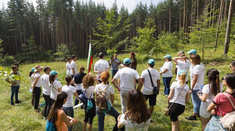 1000 нови дръвчета бяха засадени край Железница